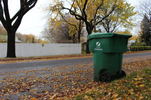 Picture of Green Cart Program
